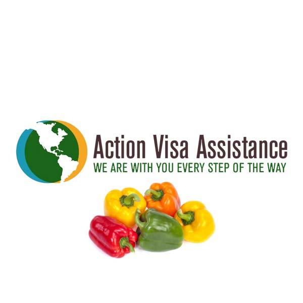 action visa title